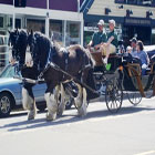 Wild Iris Farm - Horse Carriage Tours.