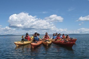 Coastal Kayaking Tours :: Mount Desert Island's premier kayaking outfitter over 30 years! Half/full day tours, Harbor & sunset tours, solo & camping tours, group tours & more! See abundant wildlife!