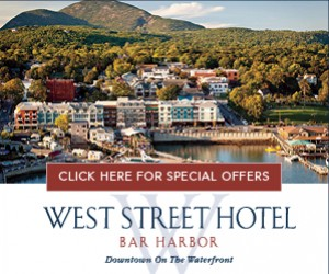 West Street Hotel : Waterfront Hotel.