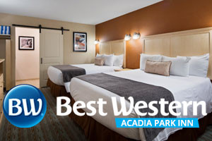 Best Western - Acadia Park Inn :: The ideal place to stay when visiting Bar Harbor and Acadia National Park! Amenities include daily breakfast, heated outdoor pool, & free wifi. Book online or call today!