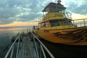 The Schoodic Ferry
