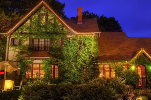 Ivy Manor Inn Bed & Breakfast :: A quaint English Tudor style Bed & Breakfast Inn, located in the heart of downtown Bar Harbor. Features 8 gorgeously-appointed rooms and daily breakfast.