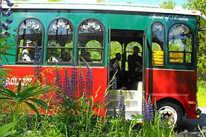 Oli's Trolley - The Fun Way To See Our Island!