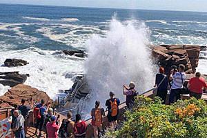 Acadia National Park Tours