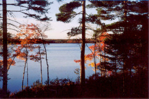 Great Pond Cabins / enjoy Fall splendor with us