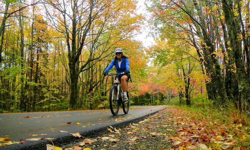 Biking Trail Carriage Road Acadia National Park Maine