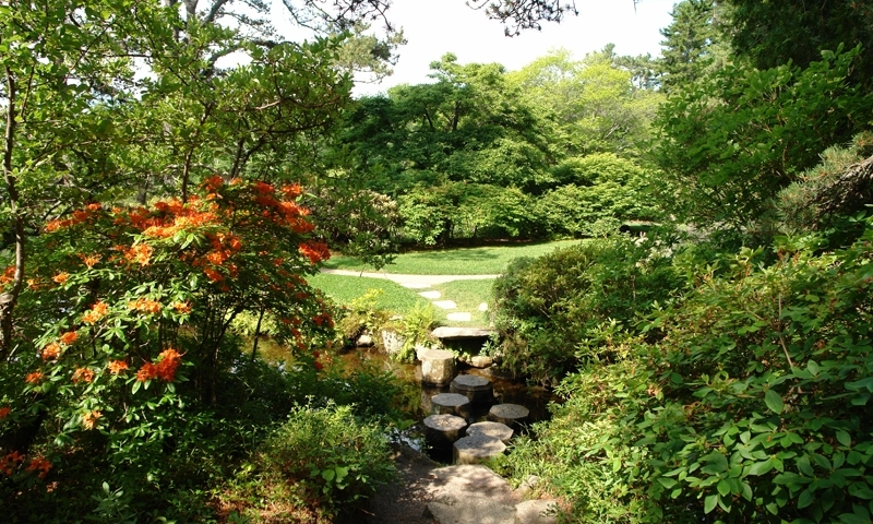 Asticou Azalea Gardens Mount Desert Island Bar Harbor Maine