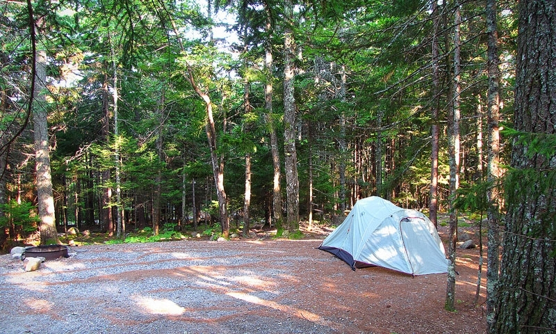 blackwoods campground acadia national park alltrips