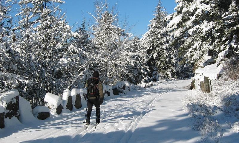 Cross Country Skiing near Jordan Pond