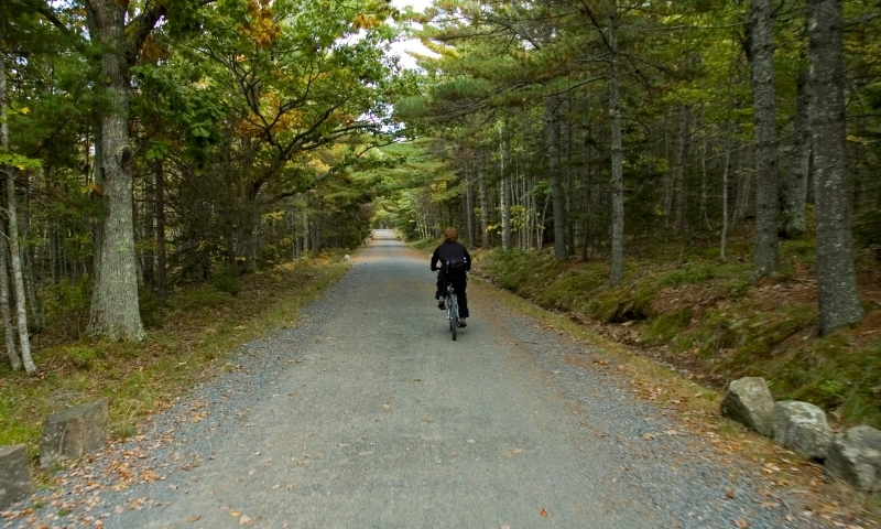Biking Trail Carriage Road Acadia National Park Maine