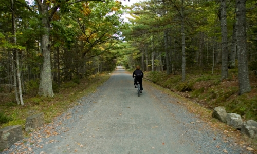 Bar Harbor Maine Vacations Amp Activities Alltrips