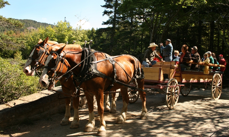 Carriage Road Trail Ride Acadia National Park Maine