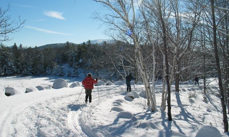 Bar Harbor Cross Maine Country Skiing
