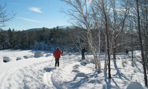 Bar Harbor Cross Maine Country Skiing
