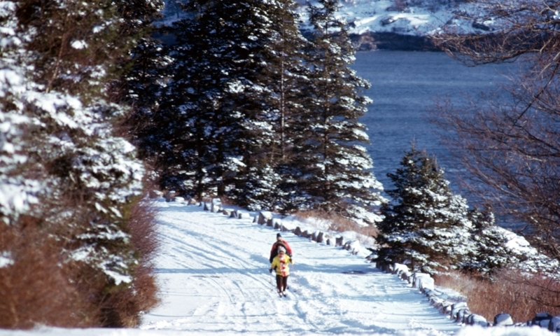 Cross Country Skiing Winter Acadia National Park Maine
