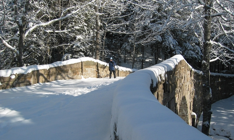 Cross Country Skiing over the Stanley Brook Bridge