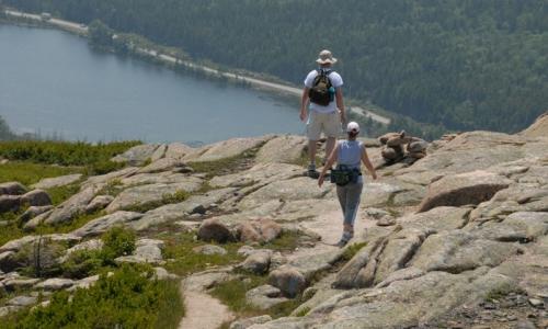 Acadia Trails