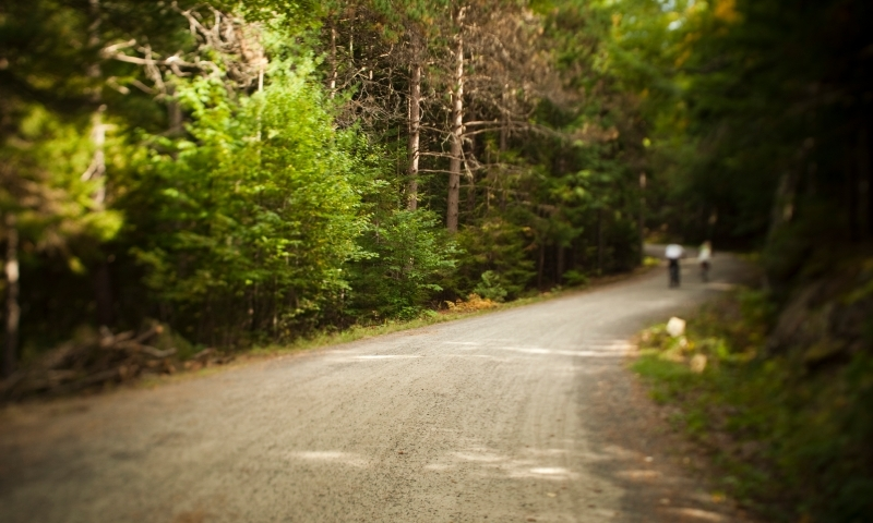 Acadia Park Carriage Trails