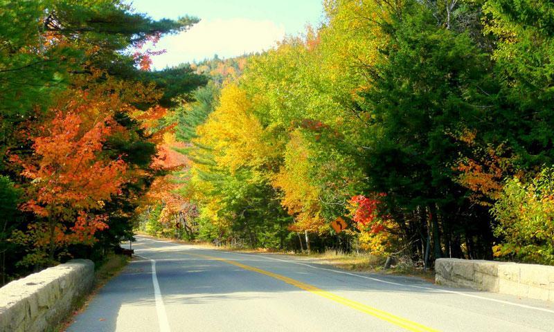 Acadia National Park Loop Road