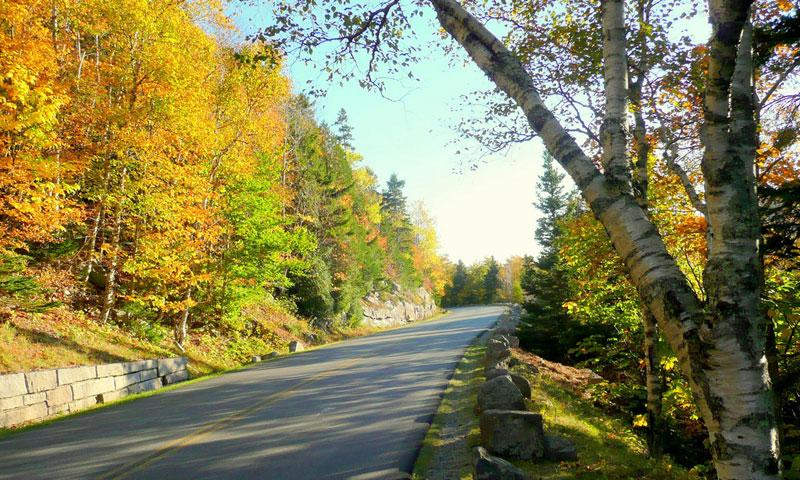 Park Loop Road through Acadia National Park