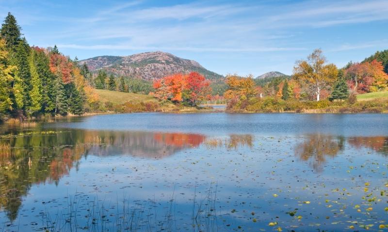 Long Pond Fall Foliage Acadia National Park Maine