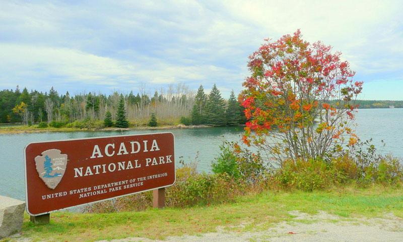 Schoodic Peninsula Maine Alltrips