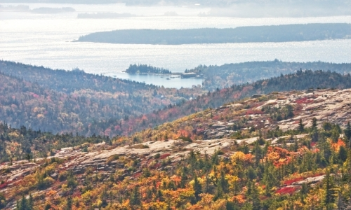 Acadia Maine Fall Foliage