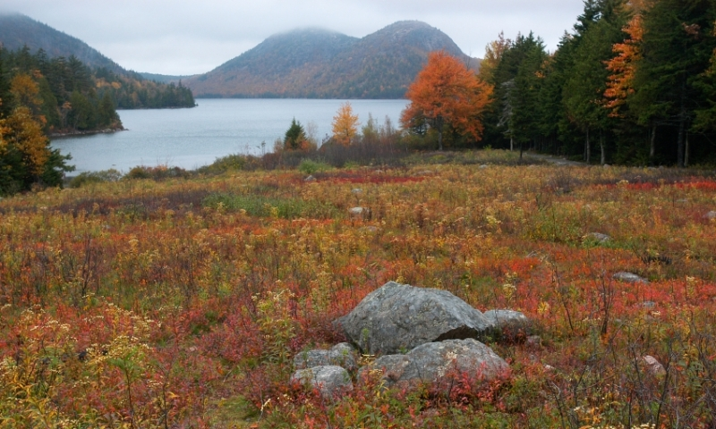 Acadia Maine Fall Colors