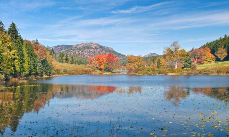Long Pond Fall Foliage Acadia National Park Maine