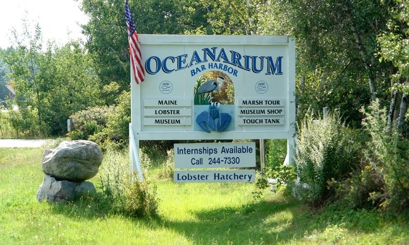 Bar Harbor Oceanarium
