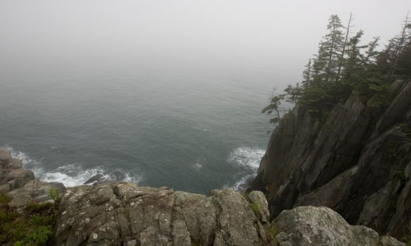 Quoddy Head State Park Maine Cliffs Atlantic Ocean